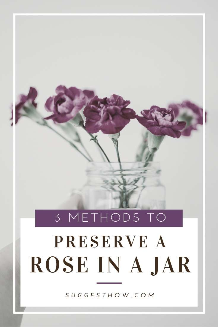 How to Preserve a Rose in a Jar