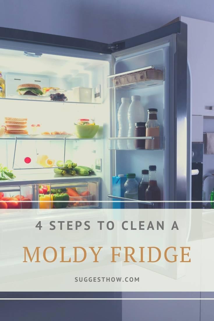 how to clean a moldy fridge