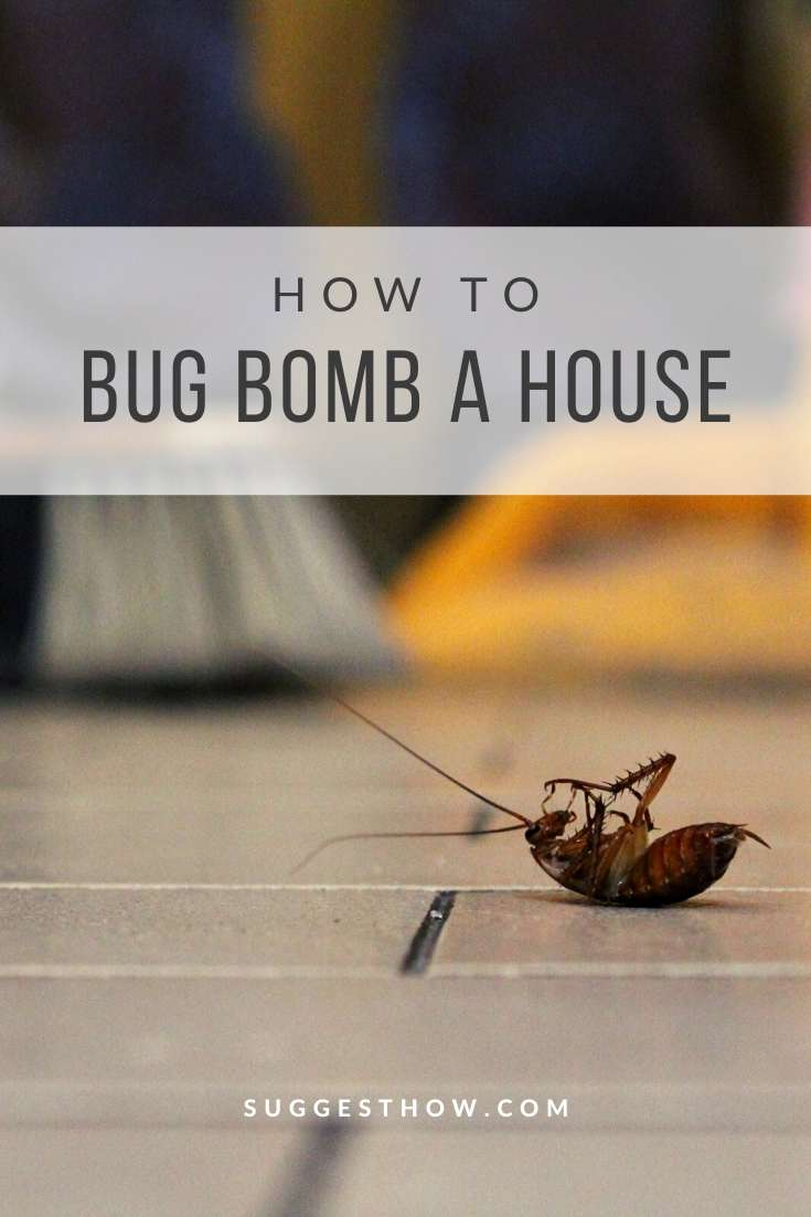 how to bug bomb a house