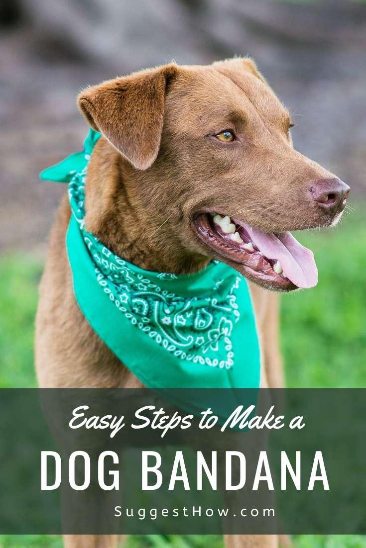 how to make a dog bandana