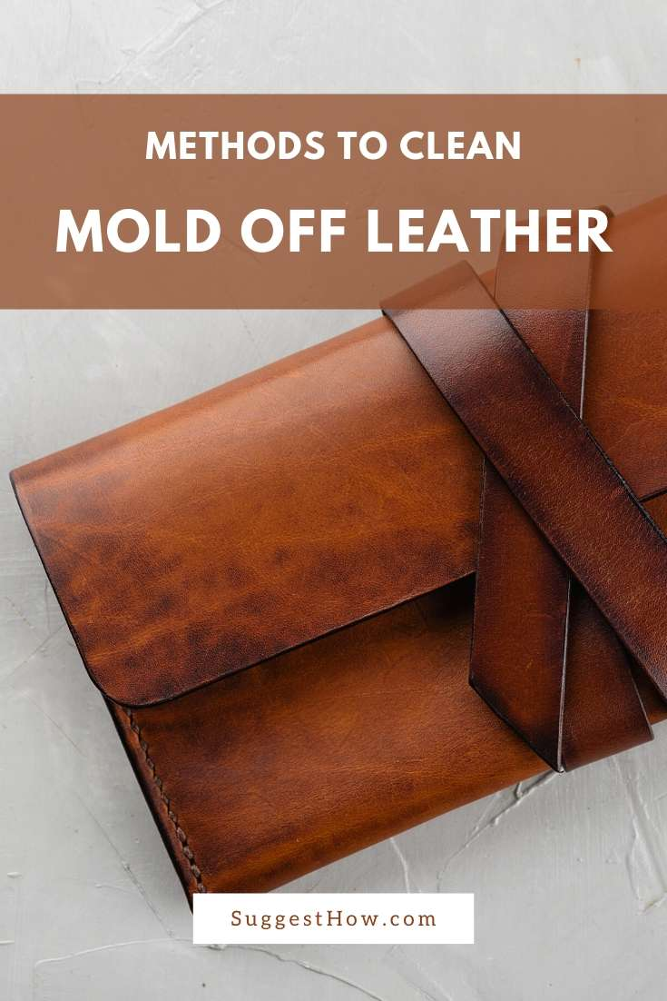 how to clean mold off leather