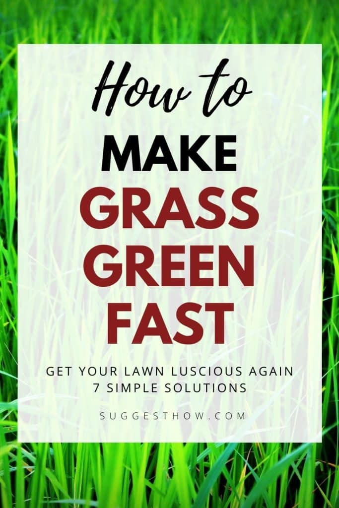how to make grass green fast